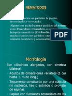 CLASE .Nematodes Triquinosis Tricuris Estrong