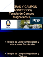 CHAKRAS y campos magnéticos
