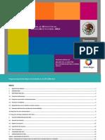 Manual de Operacion Pmg 2012