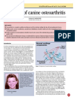 Treatment of Canine Osteoarthritis