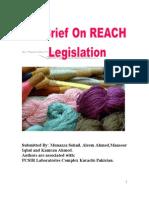 REACH 6 Mansor Iqbal