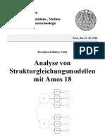Amos18 Anleitung Uni Trier