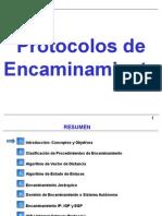 Protocolos de Encaminamiento