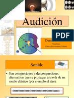 Audicion