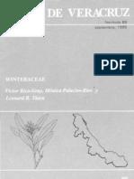 Veracruz Winteraceae