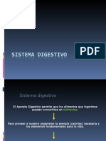 Sistema Digestivo Para Enviar