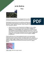 Fauna y Flora de Bolivia