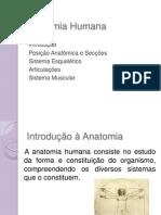 anatomiahumana_aula1