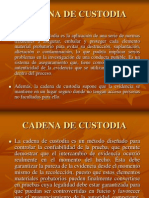 Cadena de Custodia (1)