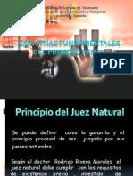 Presentacion Penal