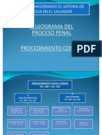 Flujograma_del Nuevo Proceso Penal.