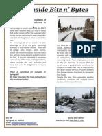 Spring Issue 2012 Bitznbytes