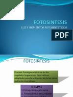 Fotosintesis. Luz y Pigmentos