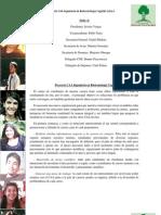 Propuesta CAA 2012
