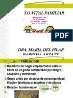 Ciclo Vital de La Familia Pilar