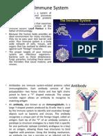 Immune System (2)