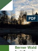 Berner Wald 01 11