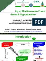Forest Profitability in Mediterranean_elouahrani