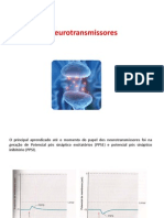 500381_neurotransmissores