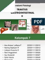 Anatomi GI2