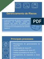 11 - Gerenciamento de Riscos -      Versão 2007
