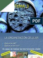 1. La organización celular