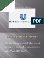 8376813 Product Life Cycle IIPS