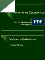 Fenomenos_Cadavericos_-_datashow