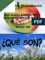 Alimentos Trasgenicos Barrientos Ana Mariamuoz Elizabeth 1221880961100386 9