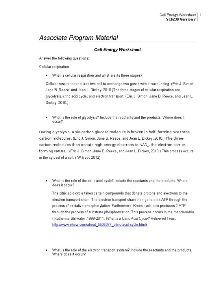 Cell Energy Worksheet   Respiração Celular   Cadeia de ...