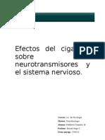 Efectos Del Cigarrillo Sobre Los Neurotransmisores y El Sistema Nervioso