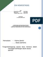 Sistem Hemostasis
