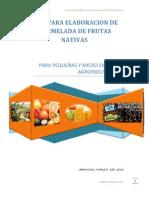 Guia Para Elaboracion de Mermelada de Frutas Nativas