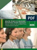 ACHS Boletin+Ergonomia++N2+2010