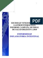 Wdhd2010 Venezuela Report Es