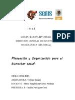 PLANEACION Y ORGANIZACIÓN PARA EL BIENESTAR SOCIAL