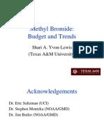 MB Alternatives 2010 SYL for Web