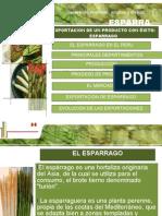 exportaesparago-100602122310-phpapp02