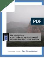 Informe Alto Parapetí - Bolivia