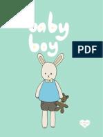 Baby Boy Bunny