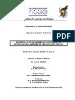 Reporte Residencias Pedro Perez
