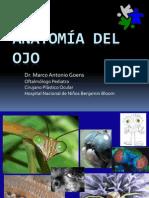 Ambliopía-estrabismo y Retinoblastoma VERAS