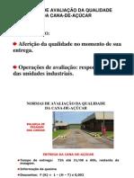 Avaliacao Qualidade Cana Felix Consecana