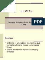 biomas-1224444100235701-9