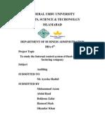 Audit Project