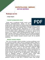 A. Kępiński - Psychopatologia Nerwic - Rodzaje nerwic, Objawy osiowe nerwic