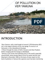 Impact of Pollution on River Yamuna
