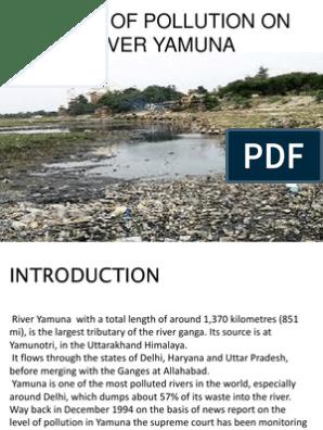 Yamuna river pollution essay rozprawka opinion essay przykad