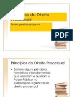 Principios_Processuais