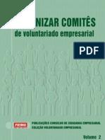 Como organizar comitês de voluntariado empresarial